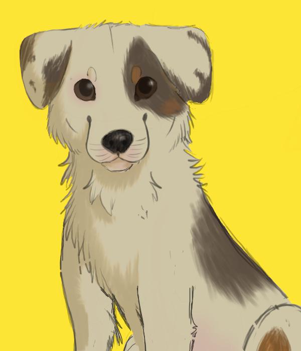 Name:  doggo doggo doggo.png Views: 57 Size:  206.1 KB