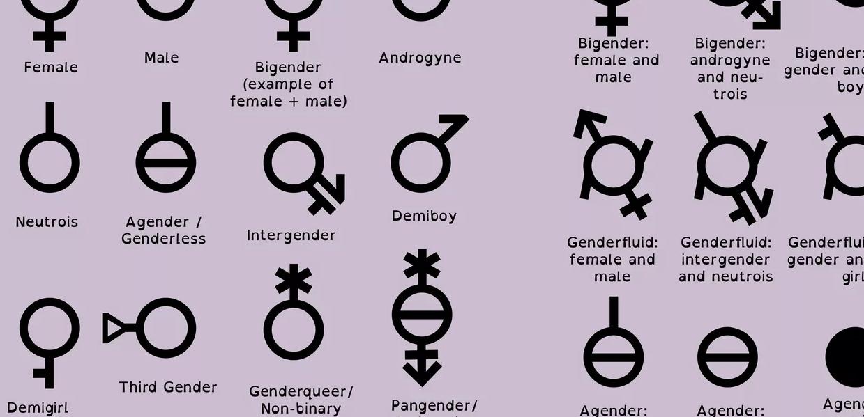 Name:  gender stuff.png Views: 38 Size:  366.2 KB