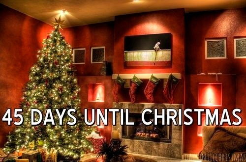 Name:  140325-45-Days-Until-Christmas.jpg Views: 16 Size:  56.1 KB