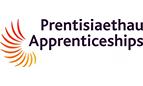 Apprenticeships in Wales