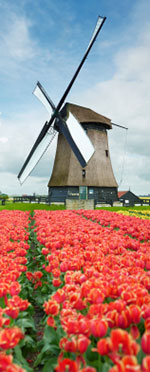File:Windmill.jpg