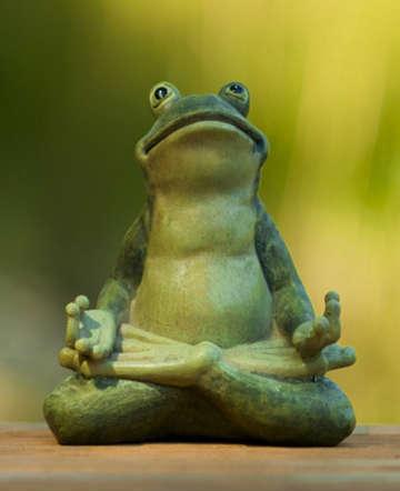 File:Calm frog.jpg