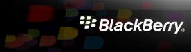 Image:Blackberry_Logo.JPG