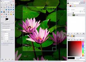File:Windows crop.jpg