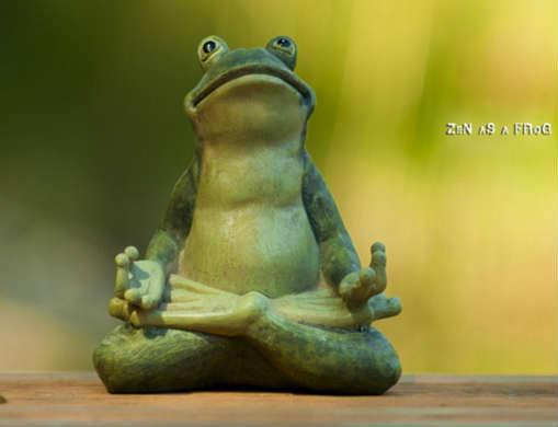 File:Zen frog.jpg
