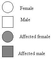 File:PEDIGREE CHART KEY.jpg