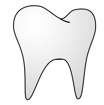 File:Tooth.jpg