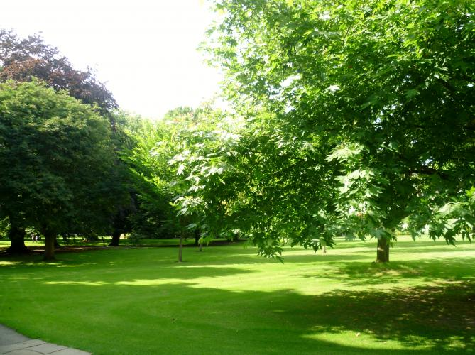 File:WorcesterCollege Grounds.jpg