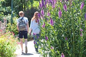 File:Students-walking.jpg