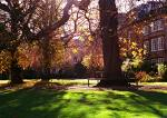File:Balliol autumn.jpg