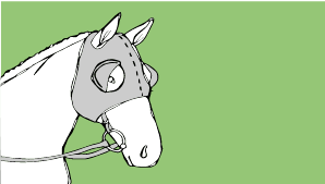 File:Pod Horse blinkers.png