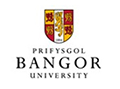 File:Bangor buttonsm.jpg