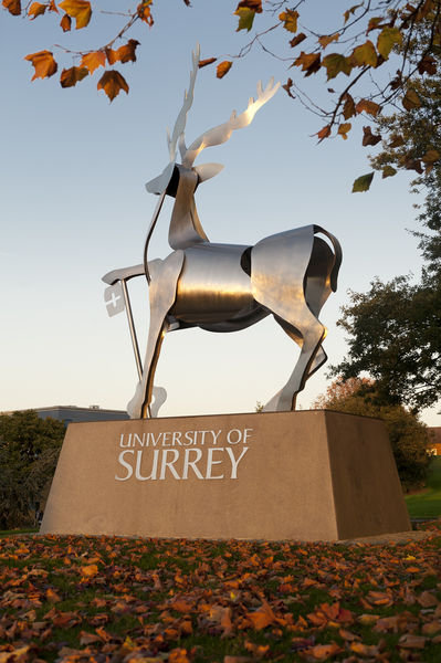 File:Surrey stag sculpture.jpg