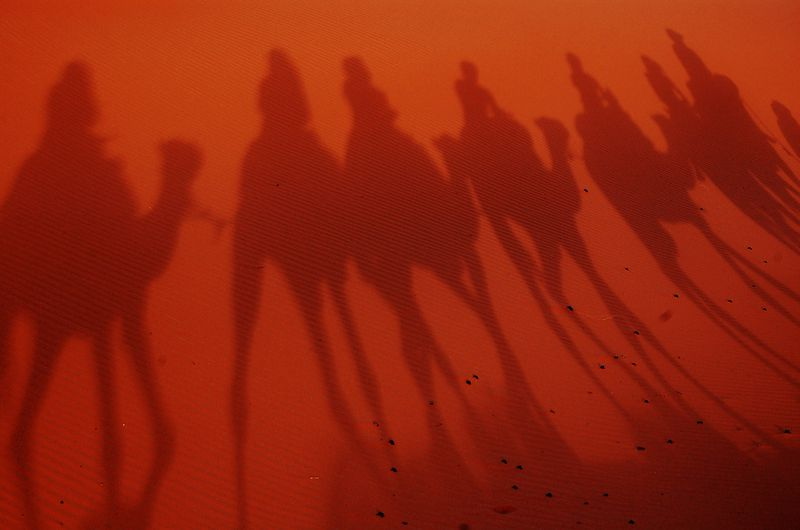 File:Camel Silhouette.JPG